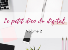 petit-dico-digital-2